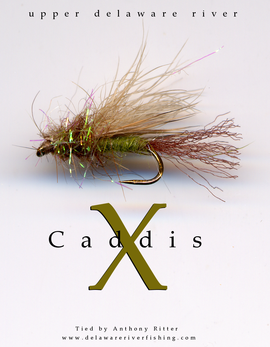 The caddis fly oregon fly fishing blog mckenzie river fly for Fly fishing blogs